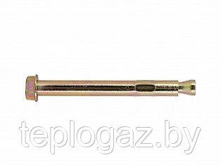 Анкерный болт с гайкой 10x125